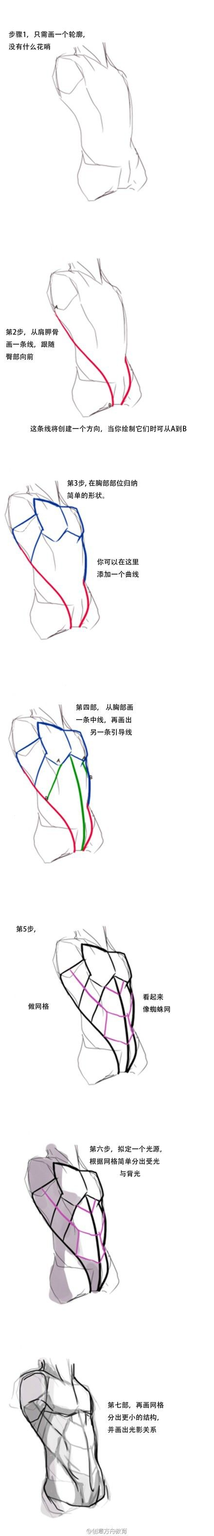 (Male) Torso Study - details on placement of muscles. All notes are in Japanese!
