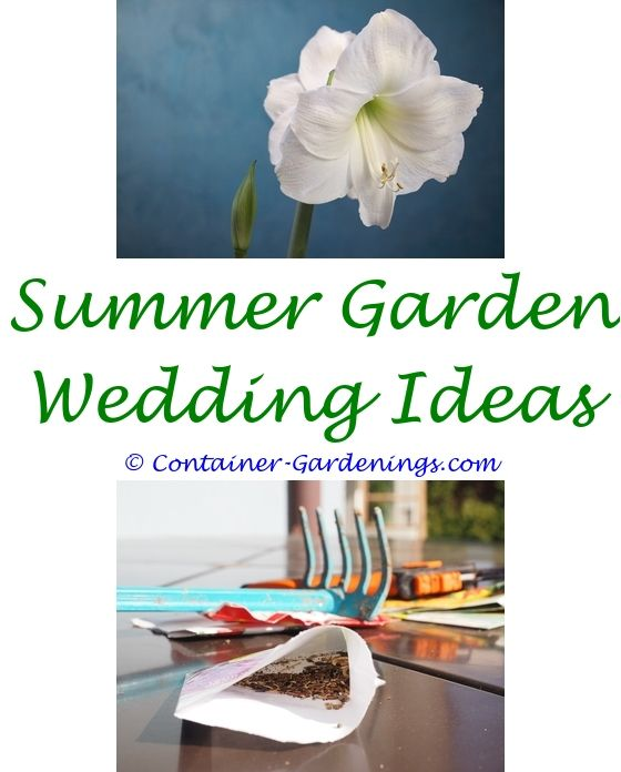 summer gardening tips india - the curious garden lesson ideas.garden games ideas for adults hosta garden ideas home front garden design ideas nz 3022676264