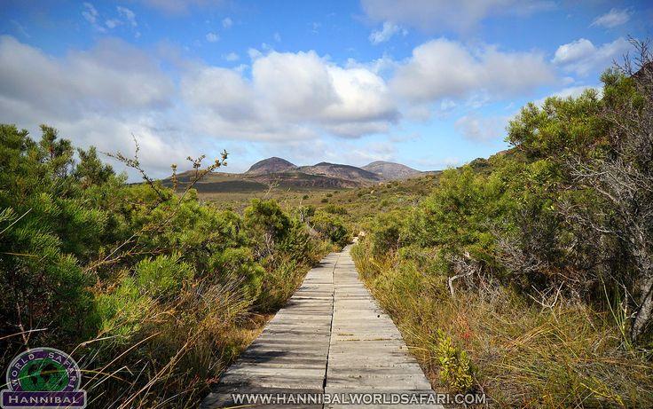 Hannibal World Safari - Live the Adventure Dream | Golden Outback, WA