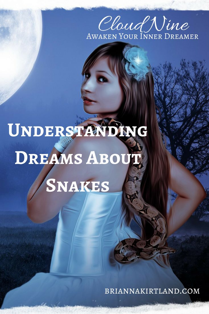 Dream interpretation, Snakes, dream symbol