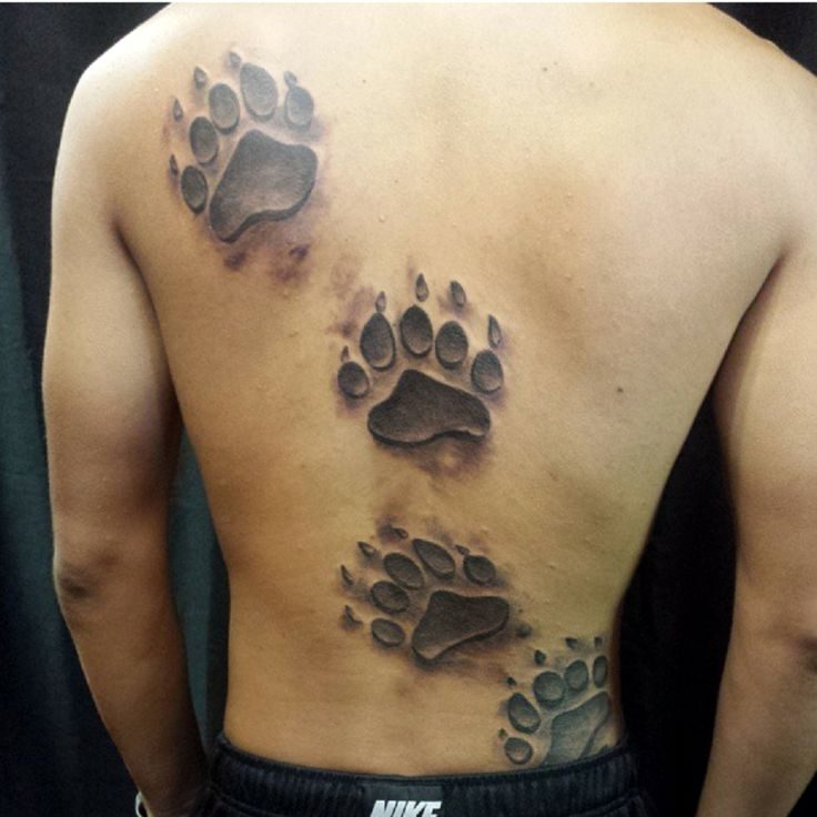 Four Bear Paw Prints Tattoo On Man Full Back