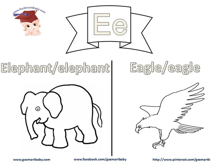 In this worksheet, letter E, an Elephant and Eagle are two things your child can easily relate to in their daily life. Help them color each word in uppercase and in lowercase, then enjoy coloring the object itself with the color of their choice.