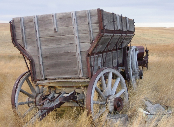 Pioneers headed west in covered wagons