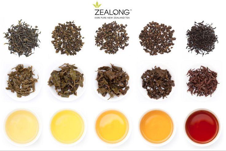 ZEALONG TEA ESTATE: pure, single-source organic tea from New Zealand