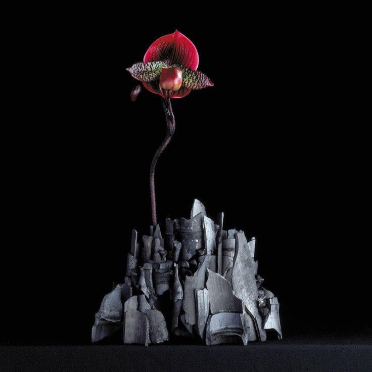 Blomsterdesigner og kunstner Daniel Ost: