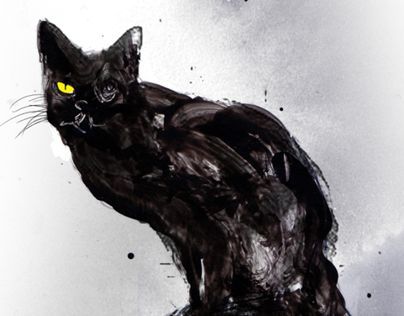 edgar allan poe a black colored pussy-cat article questions
