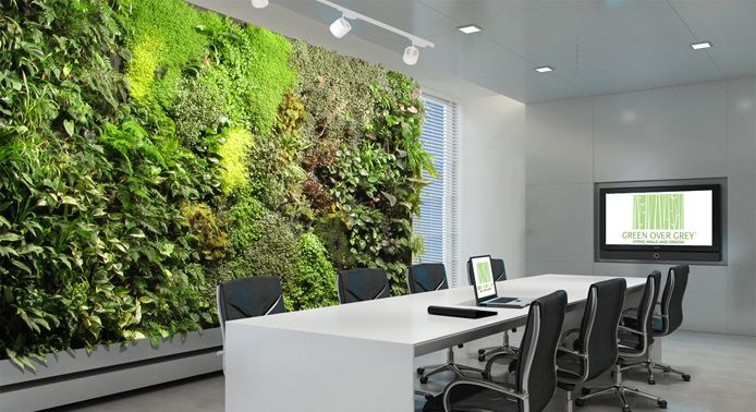 green wall in the office