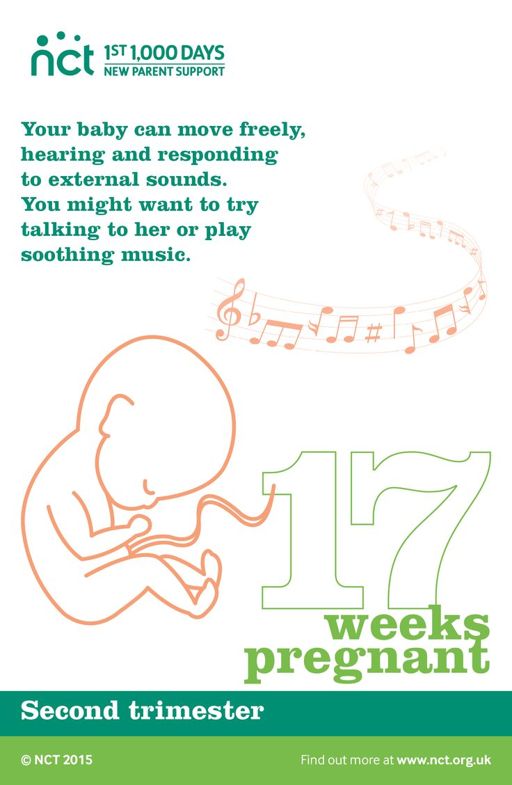 When you are 17 weeks pregnant, your baby can move freely ...