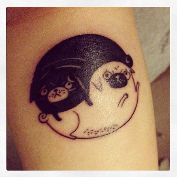 Anna Priscilla's Tao of Pug tattoo by Gemma Correll     hahaha OH my goodness…