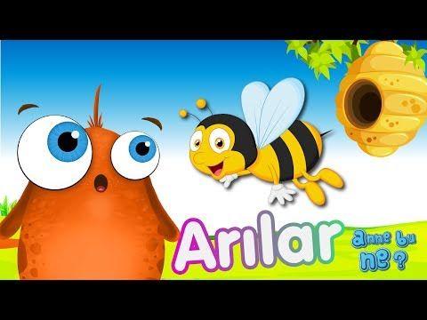 Arılar Nasıl Bal Yapar? | Okul Öncesi Eğitici Animasyon | Anne Bu Ne? - YouTube