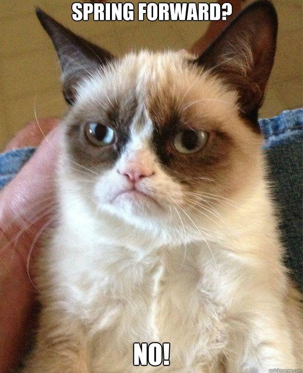 spring forward - NO!  - Grumpy Cat