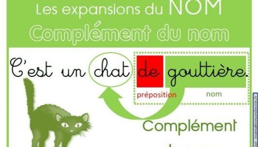 Des affiches pour les expansions du nom (adjectif qualificatif, complément du nom, proposition subordonnée relative)