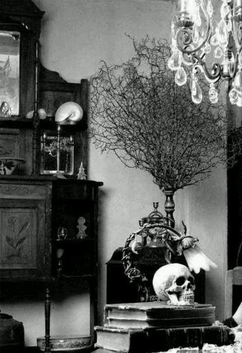 Decor ideas. Old books and human skull.