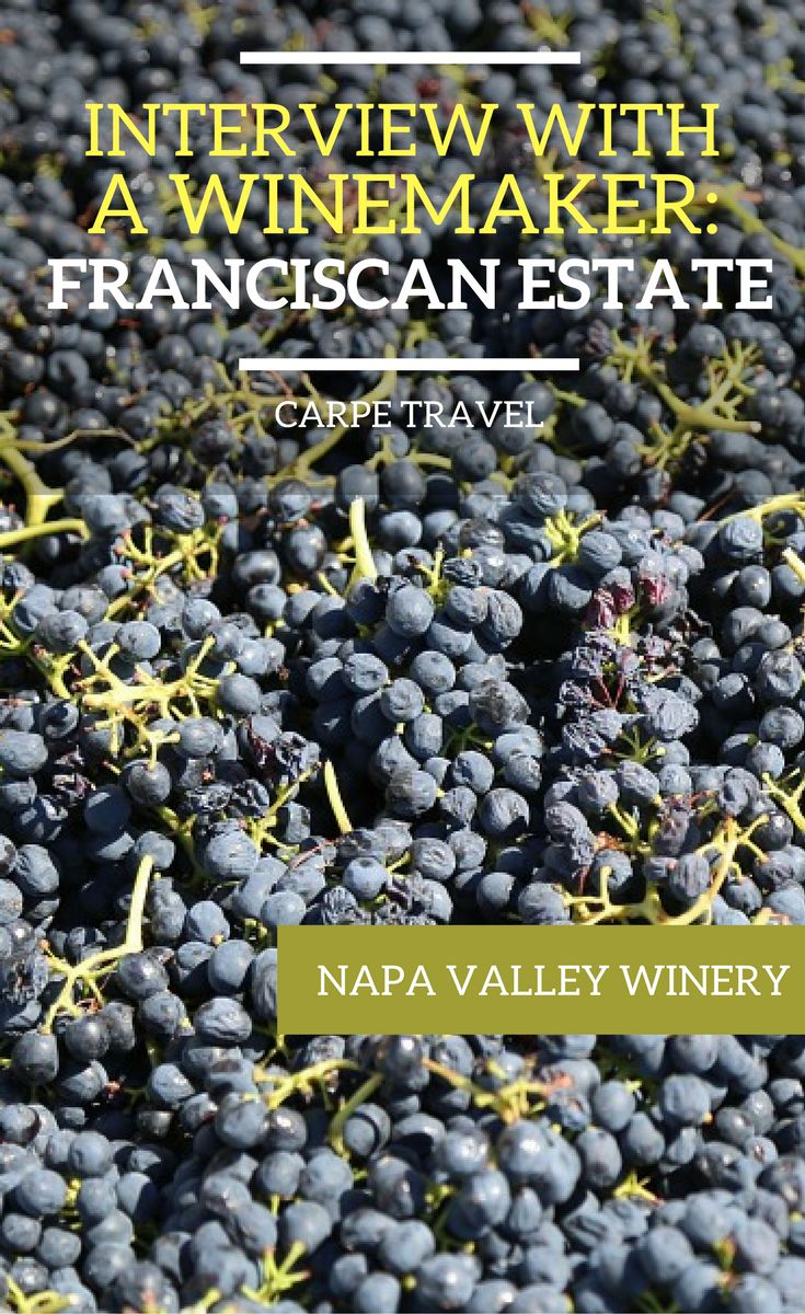 Why you should visit Franciscan Estate in Napa Valley, California + an interview to winemaker Earl Sullivan. | Napa Valley wineries | Napa Valley wine tasting | Napa Valley wine map | Napa Valley vineyard #NapaValley #Napawine #Wine via @elainschoch