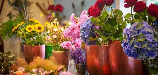 Https Www Mkaleh Com أجمل الكلمات عن الورد Flowers Flower Pots Plants
