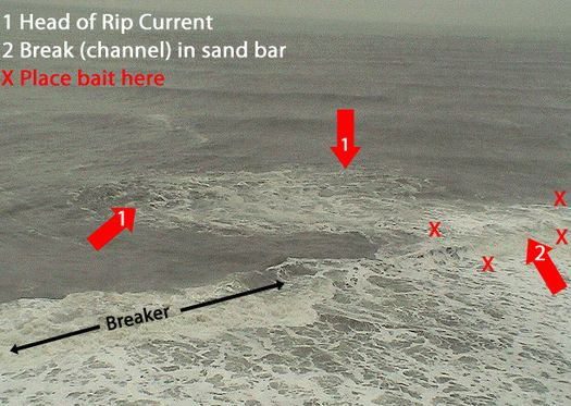 If the rip current is far out...place bait on each side of the neck, near the breaker