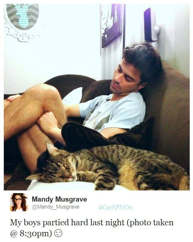 Matt Cohen - - another cute picture with the kitty; taken by his wife