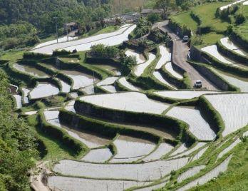 Senmaida. Looking for more information about Kagawa? Go Visit Shodoshima Furusato-mura. http://www.shodoshima.jp/