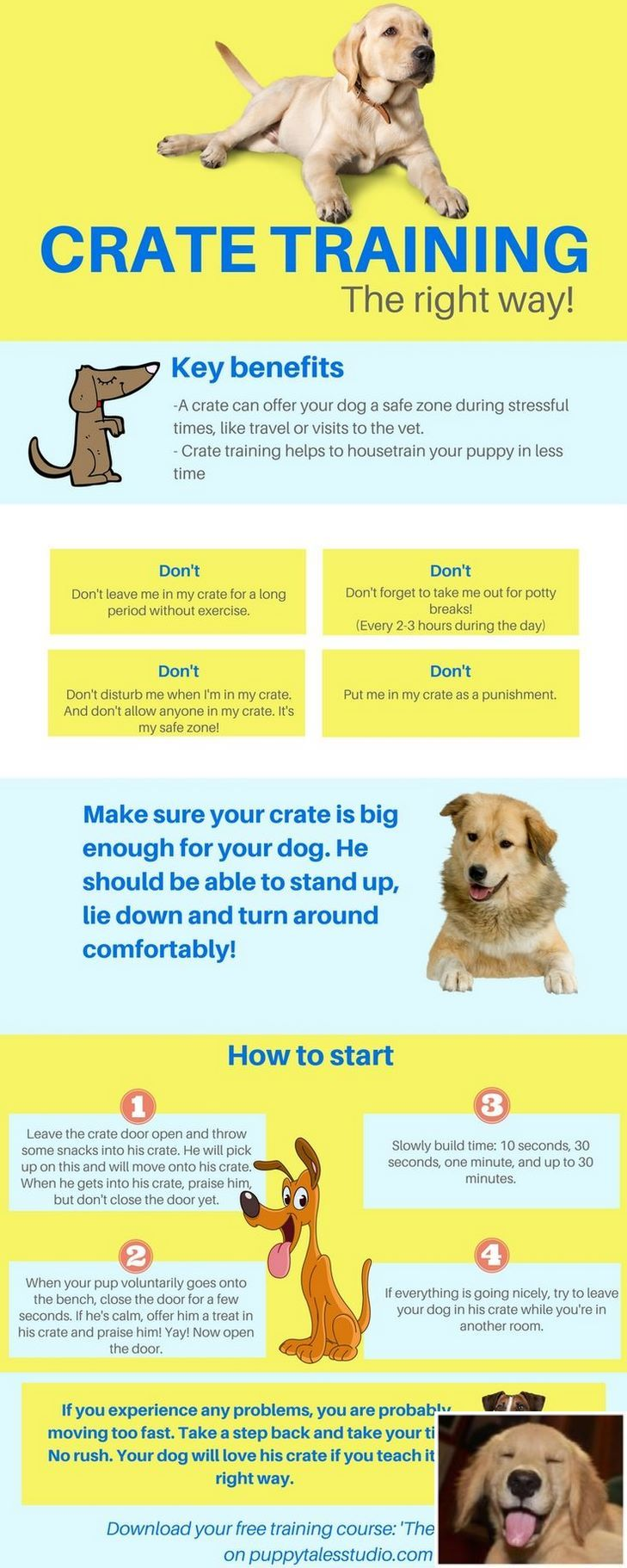 Stop Dog Jumping And Puppy Feeding Schedule Check The Pic For