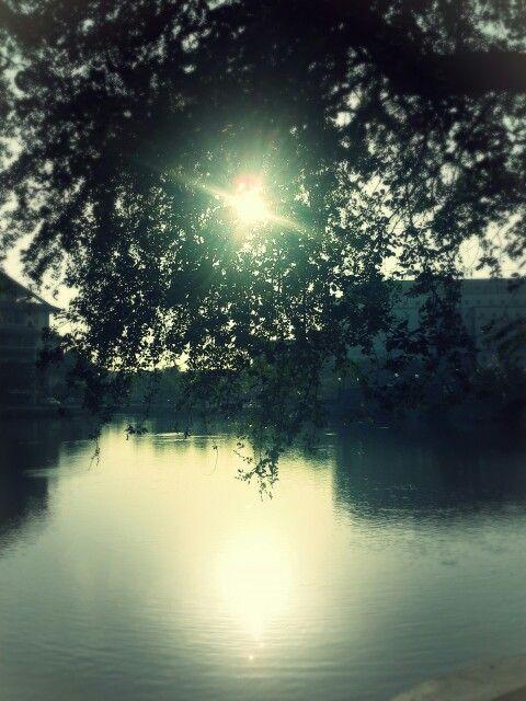 water reflecting