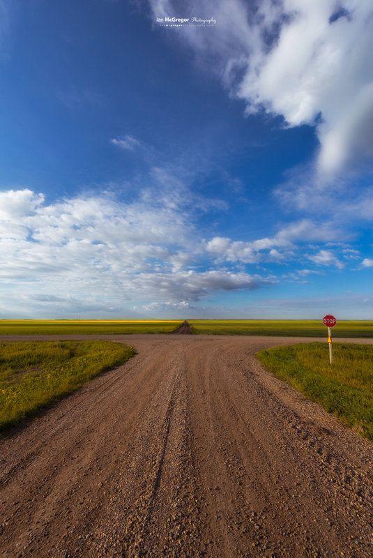 Prairie Junction 9485_13 The junction of two grid roads on the Saskatchewan Prairie in the summer months.
