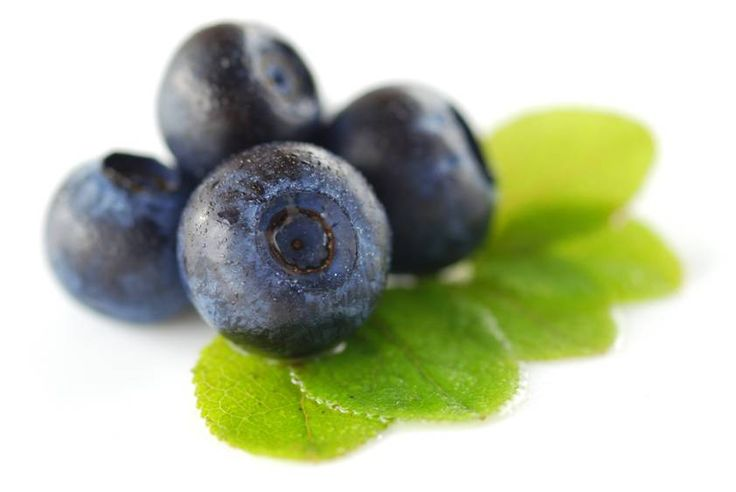 La myrtille est riche en anthocyanes, vitamines du groupe B, vitamine E et vitamine C.