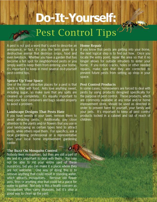 66 best organic eco friendly pest control images on pinterest pest control tips diy solutioingenieria Image collections