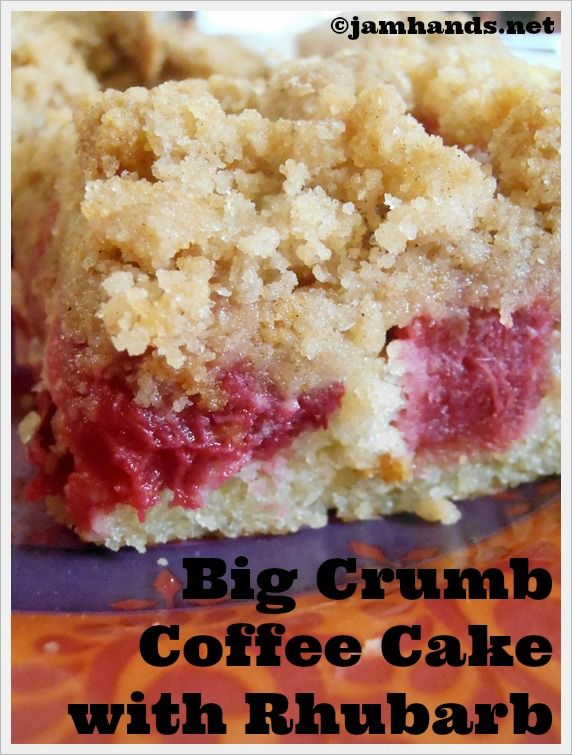 Big Crumb Coffee Cake with Rhubarb - I'm always looking for good rhubarb recipes!