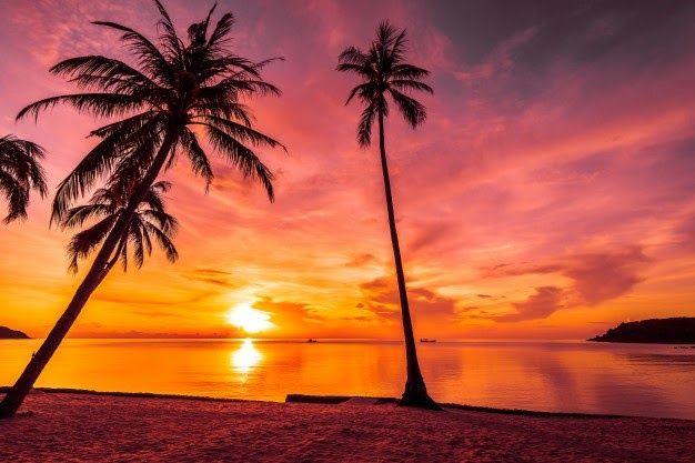 Gambar Pemandangan Pantai Sunset Di 2020 Dengan Gambar