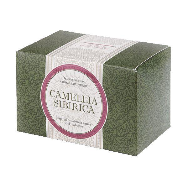 Herbata napój Camellia sibirica