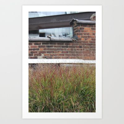 Is your grass always green? Art Print by Jaana - $17.00