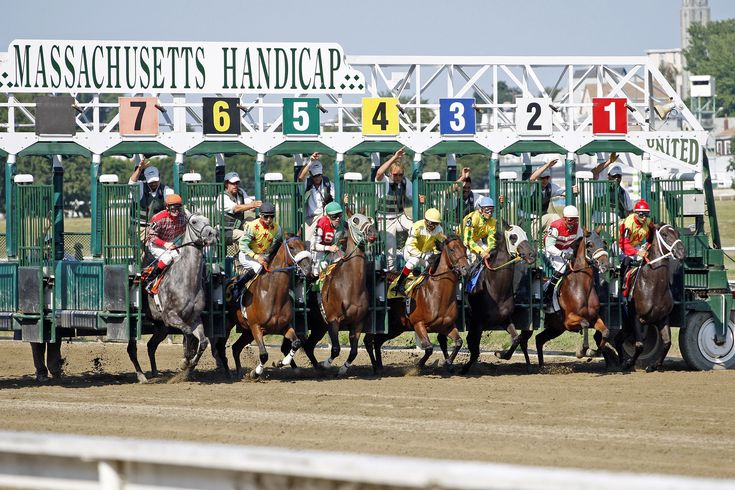 Horse racing - Wikipedia, the free encyclopedia