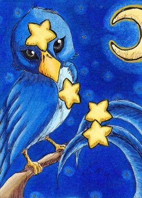 Sternenvogel
