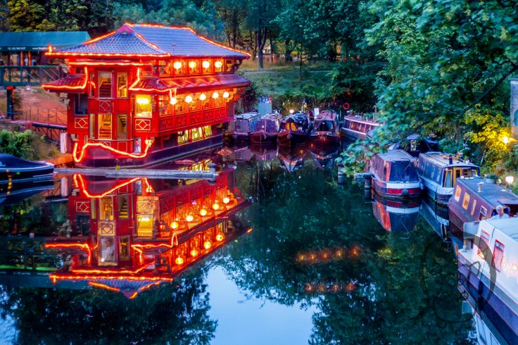 London Zoo Feng Shang Princess Southern Star Cumberland