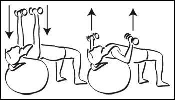 Swiss-ball : Poitrine - Exercice avec ballon N°3