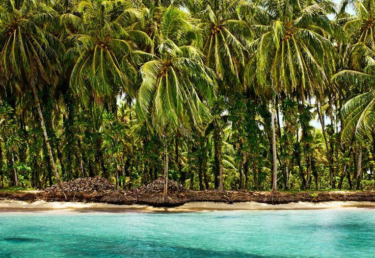 [The Zapatillas Keys, Panama](http://www.cntraveler.com/islands/caribbean/2013/01/photos-panama-bocas-del-toro-lodging-beaches-jungles?#slide=8)