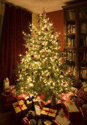 Indoor Outdoor Christmas Tree Lights