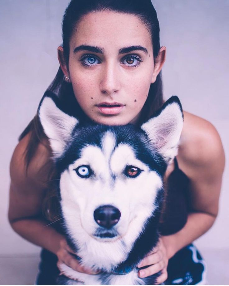 Image Result For Heterochromia Husky And Girl Animals Husky Dogs