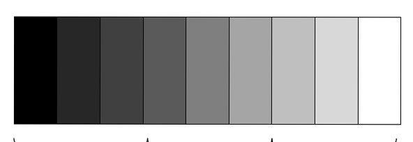 Escala De Valores Cursos De Dibujo Y Pintura Escala De Valores Texturas Visuales Colores
