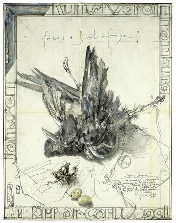 Хорст Янссен мертвая птица плакат художественная печать Germanposters.de