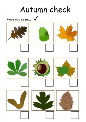 Spinning Tots - Classroom Autumn resources