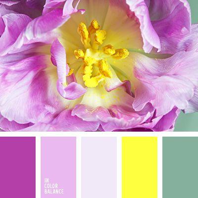 """""""бейби блу"""" цвет, """"бейби пинк"""" цвет, голубой и желтый, голубой и небесный, голубой и розовый, желтый и голубой, желтый и розовый, желтый и синий, нежные тона, розовый и голубой, розовый и желтый, розовый и оранжевый, цвет апельсина."""