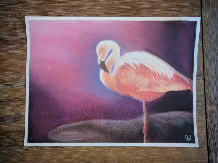 Flamingo met pastel en kleurpotlood