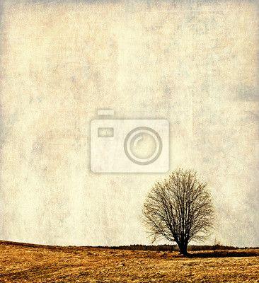 Vintage krajina ilustrace, osamocený strom na obrazech myloview. Nejlepší kvality fototapety, myloview sbírky, nálepky, obrazy, plakáty. Chcete si vyzdobit Váš domov? Pouze s myloview!