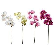 Vazolar ve Yapay Çiçekler | IKEA