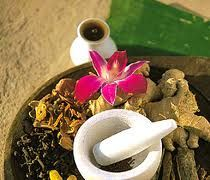 One of the best things about the monsoon in Kerala is Ayurvedic Treatment. The cool, moist, and dust free atmosphere makes it an ideal time to get an ayurvedic treatment. Ayurvedic medicines play an effective and vital role in controlling as well as treating monsoon disorders.