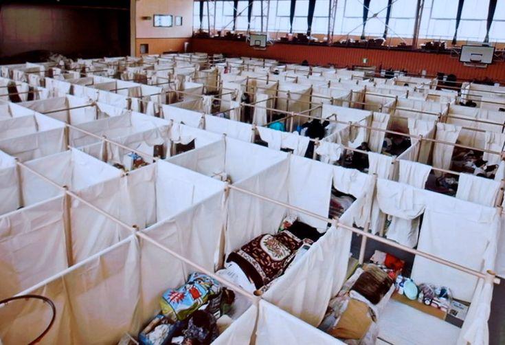 shigeru ban: emergency paper partition system