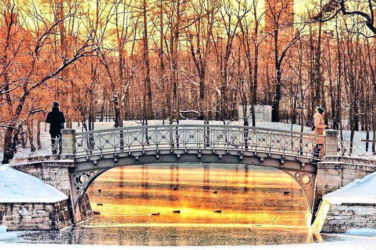 Дворцовый парк. Гатчина.   Дворцовый парк. Гатчина. Ленинградская область.   Начало создания Дворцового парка в Гатчине было положено графом Григорием Орловым, которому Екатерина II подарила Гатчину в 1765г. Руководство работами по устройству парка осуществлял специально приглашенный садовый мастер Джон Буш.   На месте леса вокруг Белого озера были высажены немногочисленные редкие растения, а также множество деревьев — дубов, плакучих ив, клёнов, лиственниц, вязов, серебристых ясеней и лип…