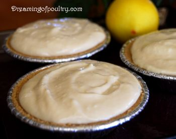 No Bake Lemon Cheesecake | Dreaming of Poultry: Yummy dessert in minutes. Great project for the kids.