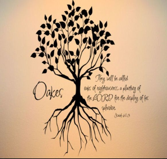 """Isaiah 61:3b~""""They will be called oaks of righteousness, a planting of the LORD for the display of his splendor."""""""